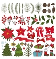Christmas tree branchesflowersdecor Collection vector image