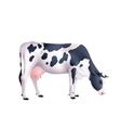 Cow Realistic vector image
