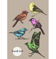 Set of hand-drawn birds vector image