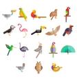 Flat design birds icon vector image