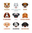 cute dog icons set i vector image