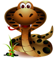 funny snake cartoon vector image vector image