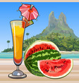 drawn wine glass with a cocktail and watermelon vector image