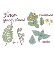 Forest grassy plants set vector image