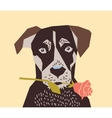 Dog with flower rose love vector image