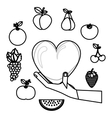 Delicious and fresh fruits vector image