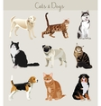 Dogs and cats set Different types vector image