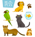 Home pets set isolated on white cat dog parrot vector image