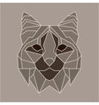 Brown and beige low poly bobcat vector image