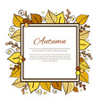 autumn frame and leaves on vector image