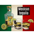 Two stemware of tequila with bootle vector image