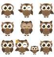 set of brown owls and owlets isolated on white vector image
