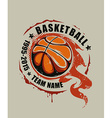 Basketball Art vector image