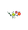 flower colorful abstract decorative logo vector image