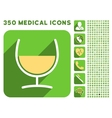 Remedy Glass Icon and Medical Longshadow Icon Set vector image