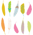 Colorful Aztec Feathers Feathers Design Elements vector image