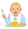 Baby boy with spoon and plate vector image