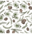 Christmas tree branchescone seamless pattern vector image