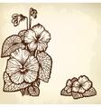 Violet bouquet vector image vector image