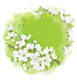 spring banner circkle vector image vector image