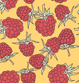 ripe raspberry seamless pettern on oranje vector image