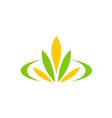 green leaf flower plant spa logo vector image