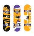 skateboards graphic design vector image