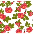 Seamless floral background with wild rose vector image