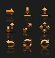 Set of golden icons vector image