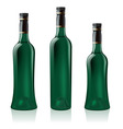 green wine bottles vector image vector image