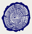 Cross section of tree stump vector image