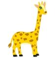 Cartoon animal giraffe vector image