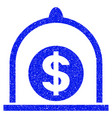 dollar standard grunge icon vector image