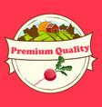 thin line radish design vegetable food banner vector image