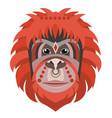 orangutan head logo monkey decorative vector image