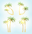 Set realistic trees with patches of sunlight vector image