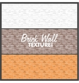 Brick Wall Texture Background vector image
