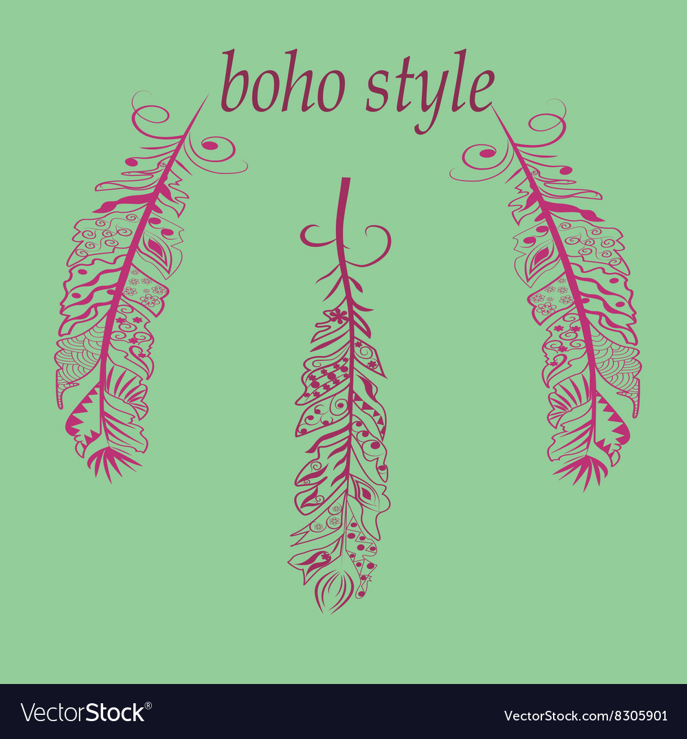 Feathers in boho vector