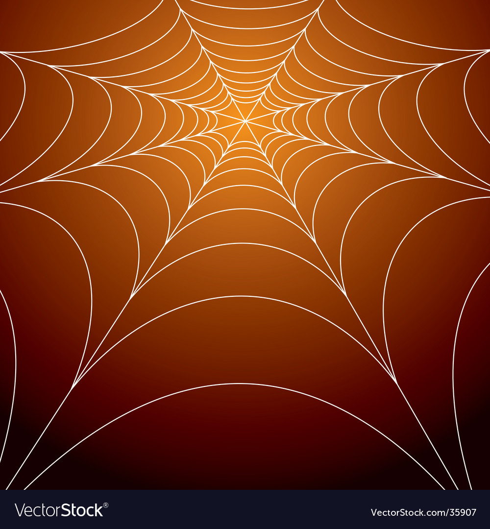 Spooky spiders web vector