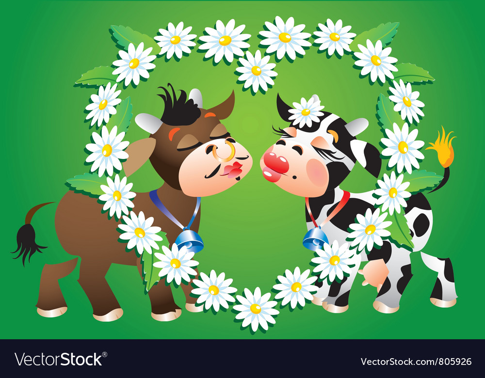Cartoon kissing cows vector