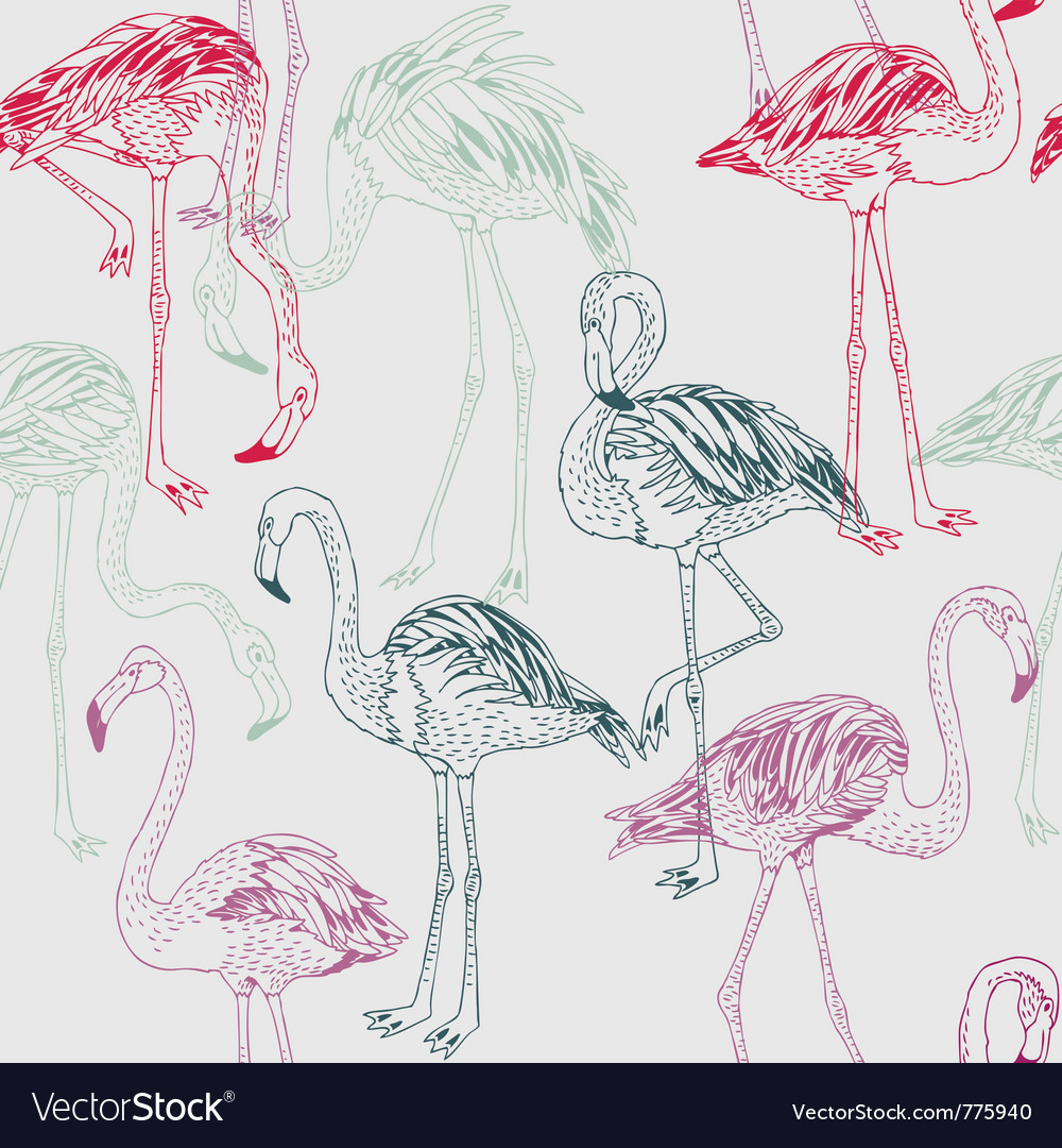 Flamingo drawing vector