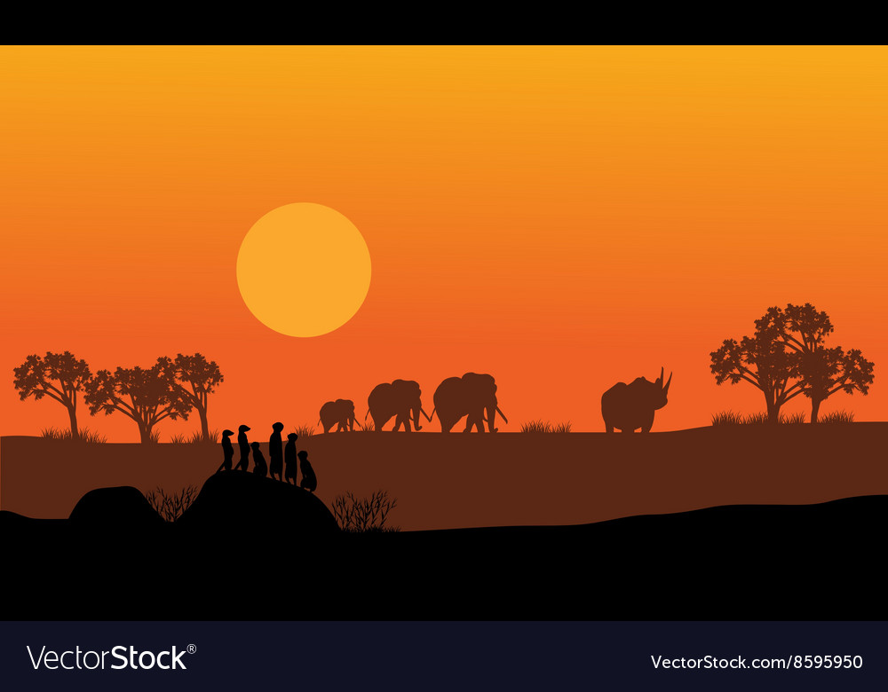 Elephant and rhino silhouette vector
