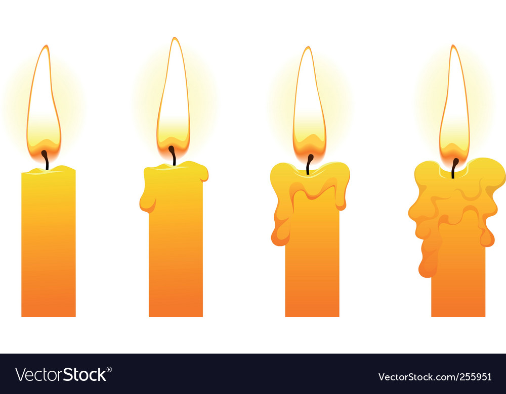 Candles on white vector