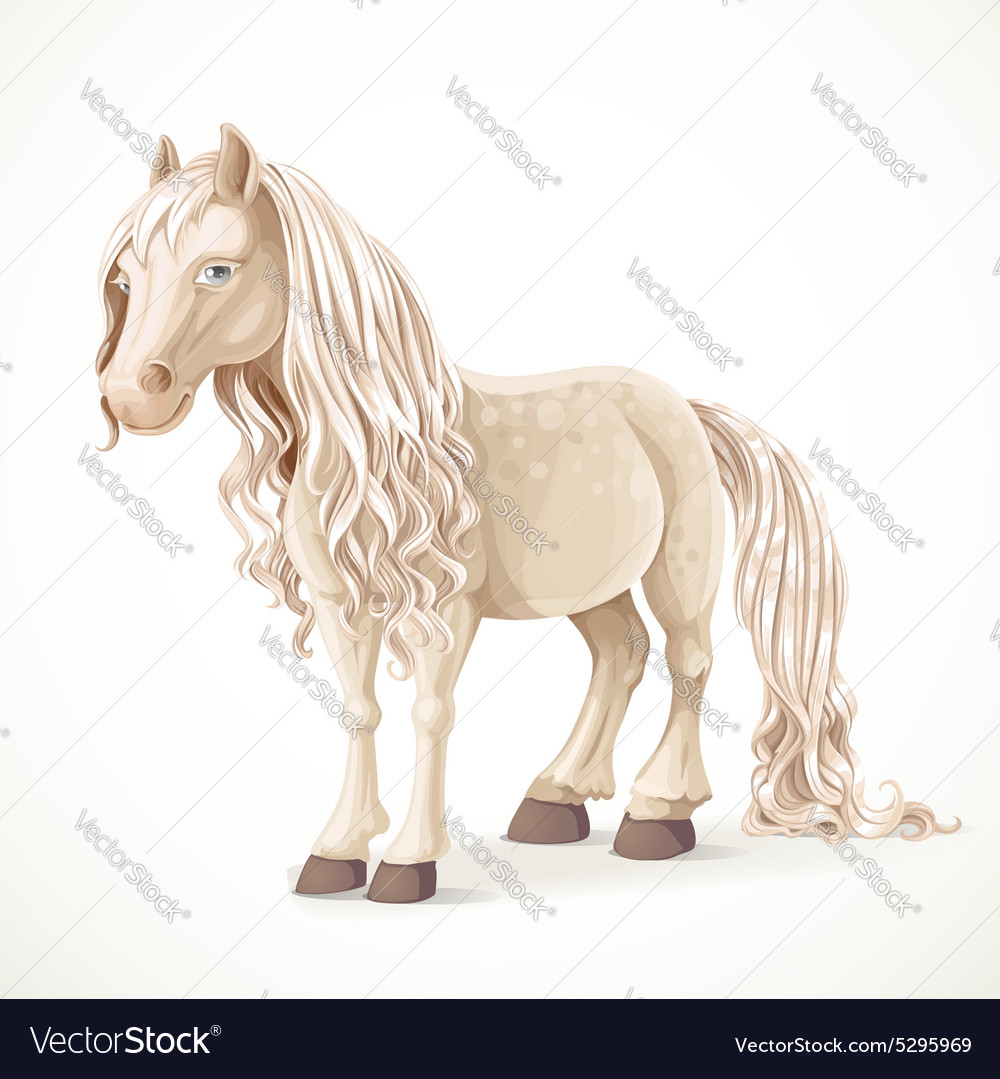 Cute white pony horse isolated on a white vector