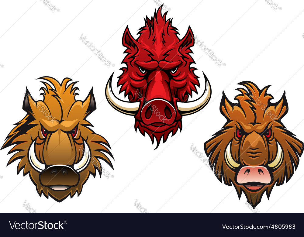 Fierce cartoon wild boar characters vector