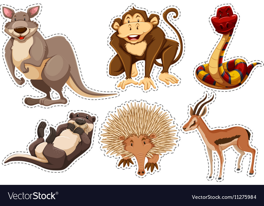 Sticker set with different types of animals vector
