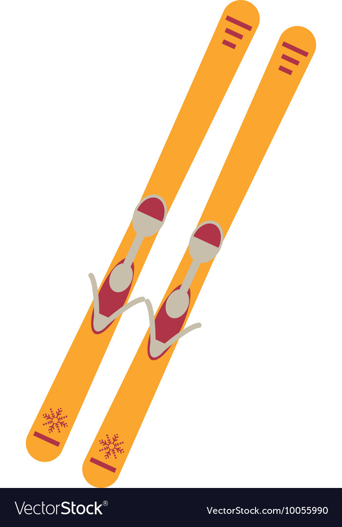Pair of skis icon vector