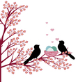 birds with nest vector image