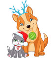 christmas dog with cat vector image