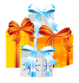 Gift to holiday vector image